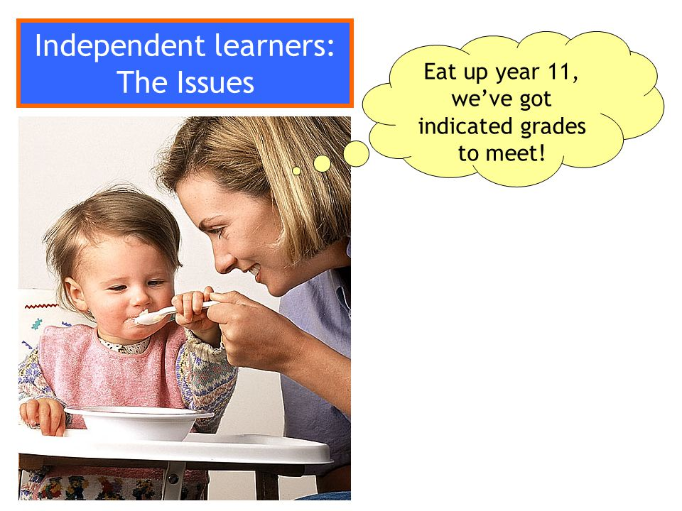 What do you think independent learners should be able to do in your subject?