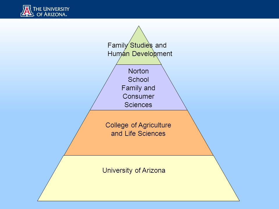 Norton School Family and Consumer Sciences College of Agriculture and Life Sciences University of Arizona Family Studies and Human Development