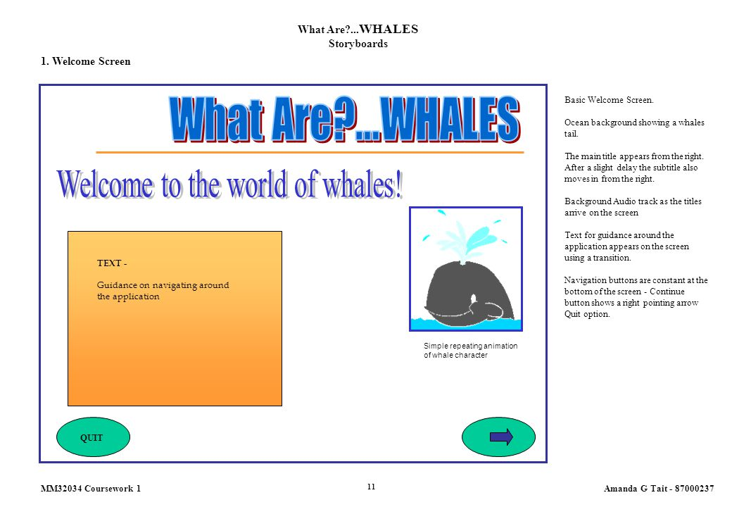 What Are?... WHALES Storyboards 1. Welcome Screen Basic Welcome Screen. Ocean background showing a whales tail. The main title appears from the right.