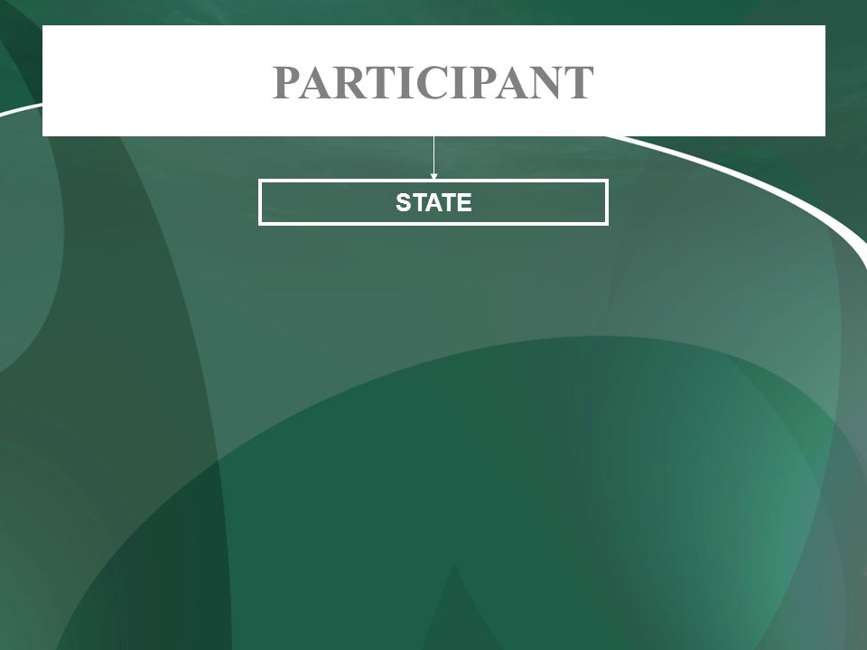 STATE PARTICIPANT