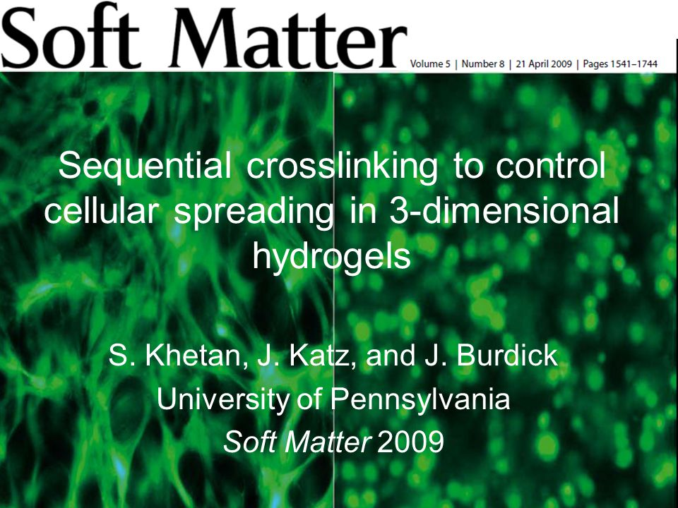 Sequential crosslinking to control cellular spreading in 3-dimensional hydrogels S.