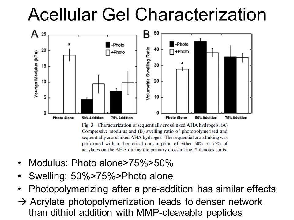 Acellular Gel Characterization Modulus: Photo alone>75%>50% Swelling: 50%>75%>Photo alone Photopolymerizing after a pre-addition has similar effects  Acrylate photopolymerization leads to denser network than dithiol addition with MMP-cleavable peptides