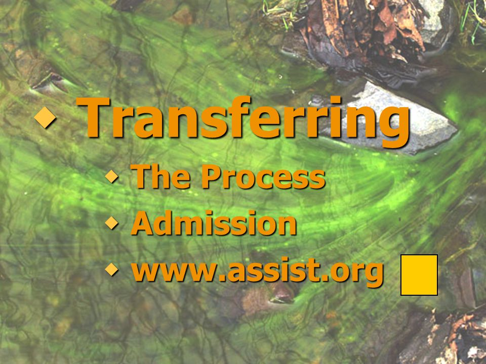  Transferring  The Process  Admission  www.assist.org  Transferring  The Process  Admission  www.assist.org