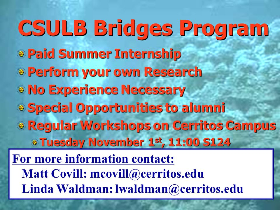 CSULB Bridges Program Paid Summer Internship Perform your own Research No Experience Necessary Special Opportunities to alumni Regular Workshops on Ce