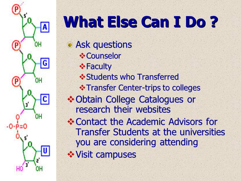 Ask questions  Counselor  Faculty  Students who Transferred  Transfer Center-trips to colleges  Obtain College Catalogues or research their websi