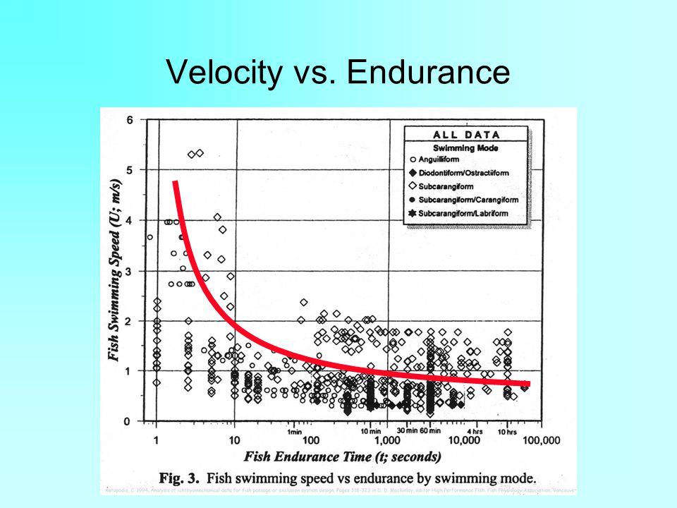Velocity vs. Endurance