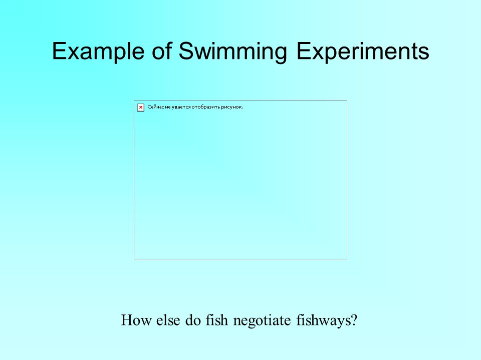 Example of Swimming Experiments How else do fish negotiate fishways?
