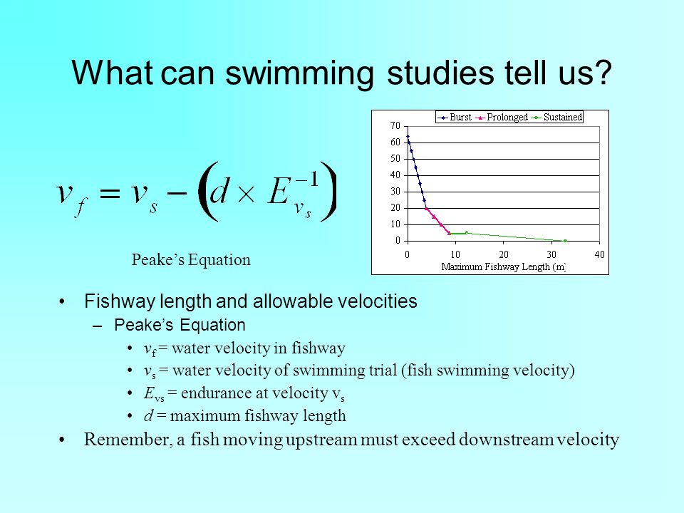 What can swimming studies tell us.