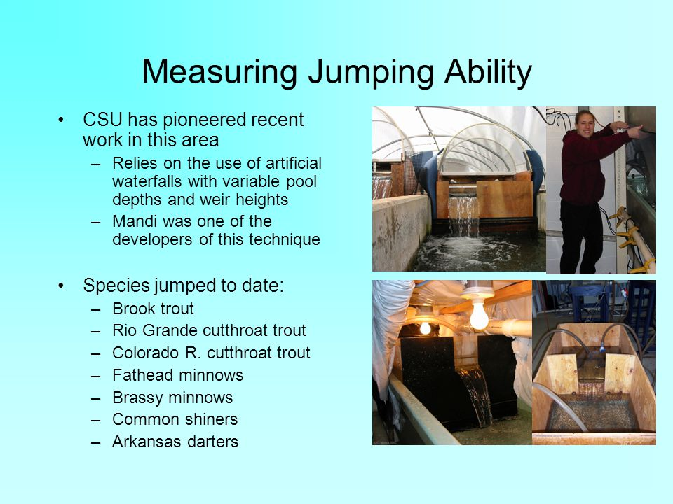 Measuring Jumping Ability CSU has pioneered recent work in this area –Relies on the use of artificial waterfalls with variable pool depths and weir heights –Mandi was one of the developers of this technique Species jumped to date: –Brook trout –Rio Grande cutthroat trout –Colorado R.