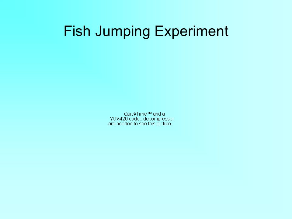 Fish Jumping Experiment