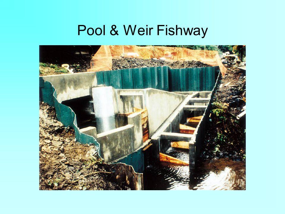 Pool & Weir Fishway