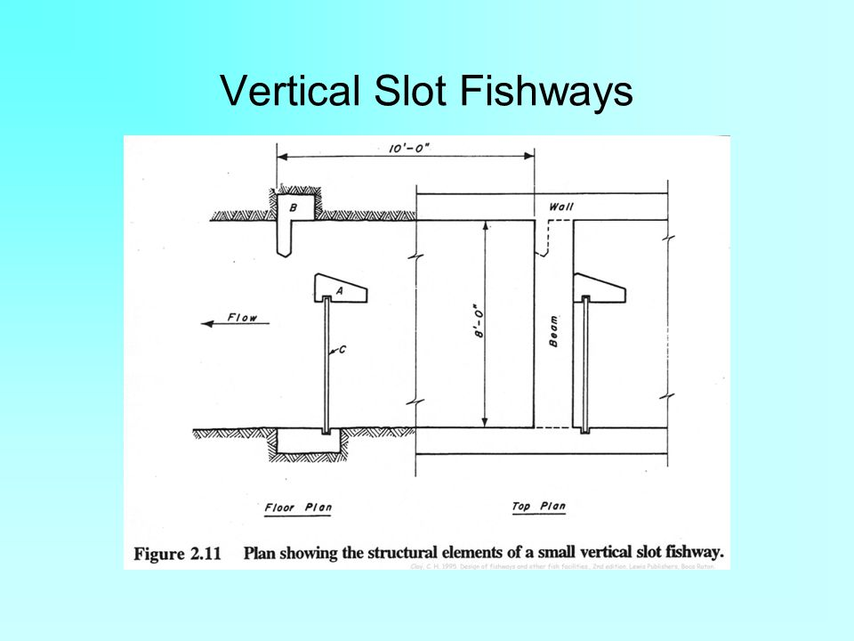Vertical Slot Fishways