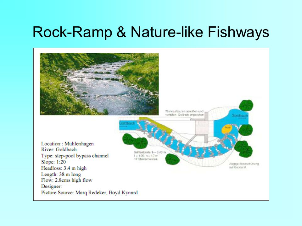 Rock-Ramp & Nature-like Fishways