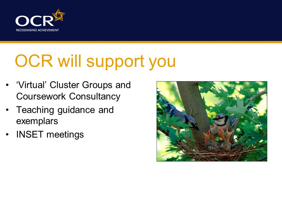 OCR will support you 'Virtual' Cluster Groups and Coursework Consultancy Teaching guidance and exemplars INSET meetings
