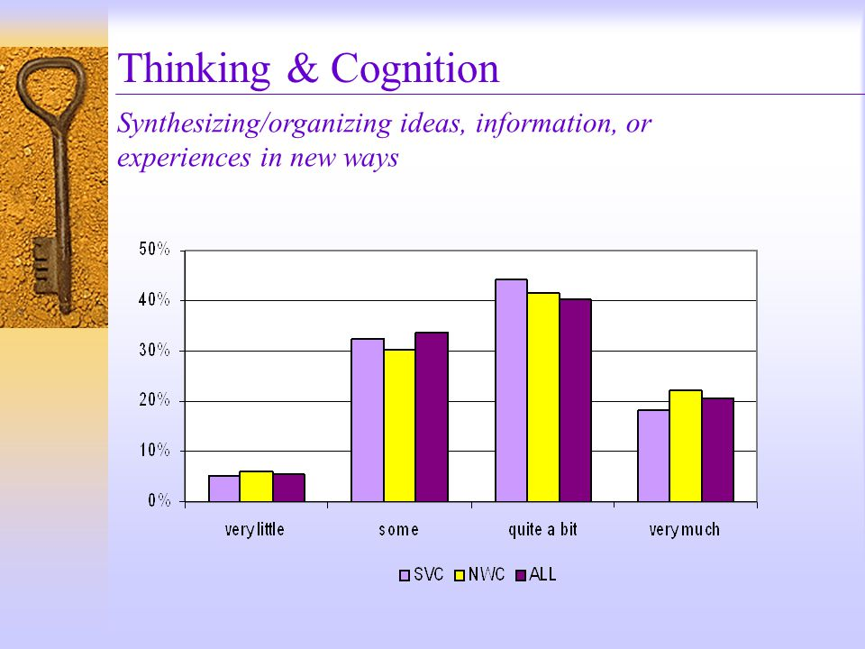 Thinking & Cognition Synthesizing/organizing ideas, information, or experiences in new ways