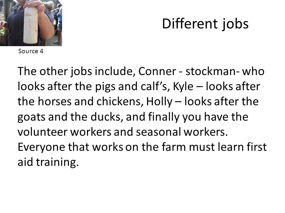 Different jobs The other jobs include, Conner - stockman- who looks after the pigs and calf's, Kyle – looks after the horses and chickens, Holly – looks after the goats and the ducks, and finally you have the volunteer workers and seasonal workers.