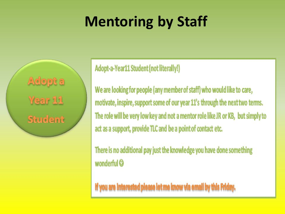 Mentoring by Staff