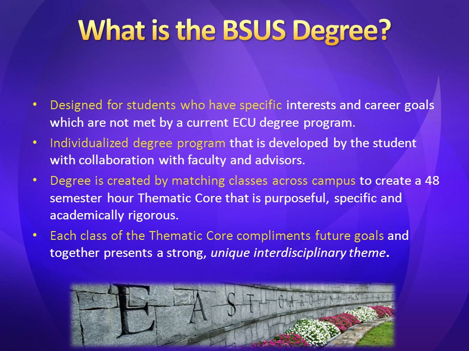 Designed for students who have specific interests and career goals which are not met by a current ECU degree program. Individualized degree program th
