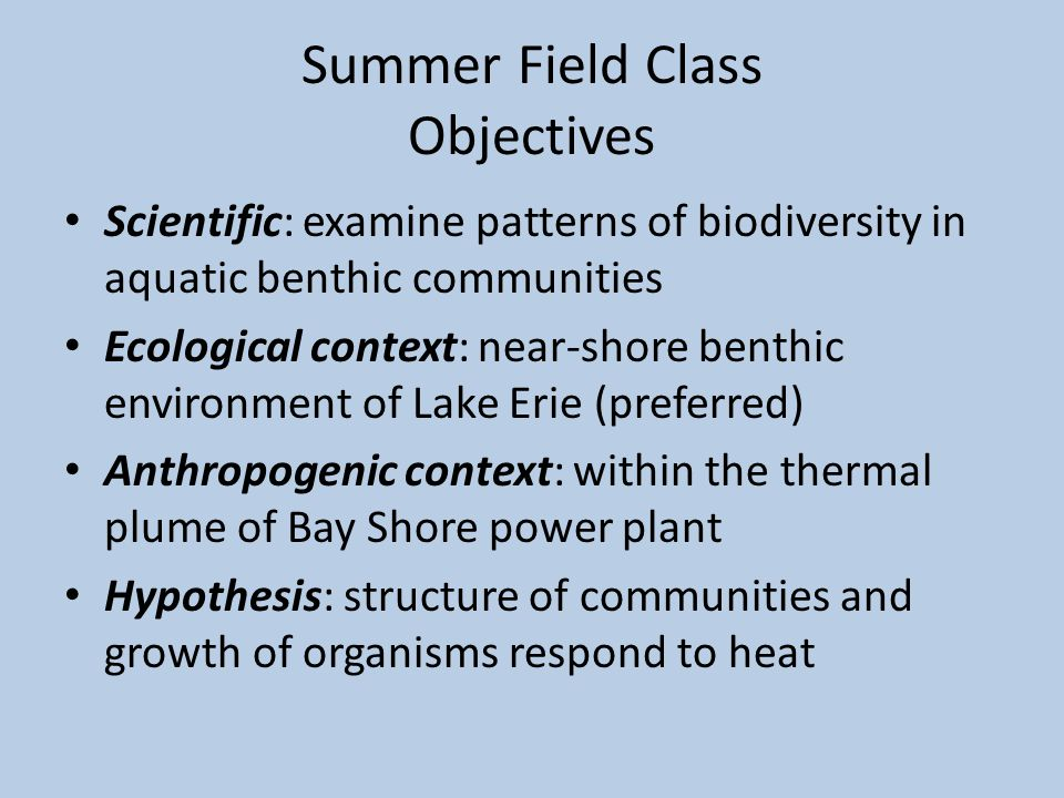 Summer Field Class Objectives Scientific: examine patterns of biodiversity in aquatic benthic communities Ecological context: near-shore benthic environment of Lake Erie (preferred) Anthropogenic context: within the thermal plume of Bay Shore power plant Hypothesis: structure of communities and growth of organisms respond to heat