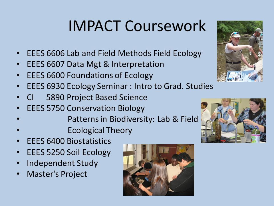 IMPACT Coursework EEES 6606 Lab and Field Methods Field Ecology EEES 6607 Data Mgt & Interpretation EEES 6600 Foundations of Ecology EEES 6930 Ecology Seminar : Intro to Grad.