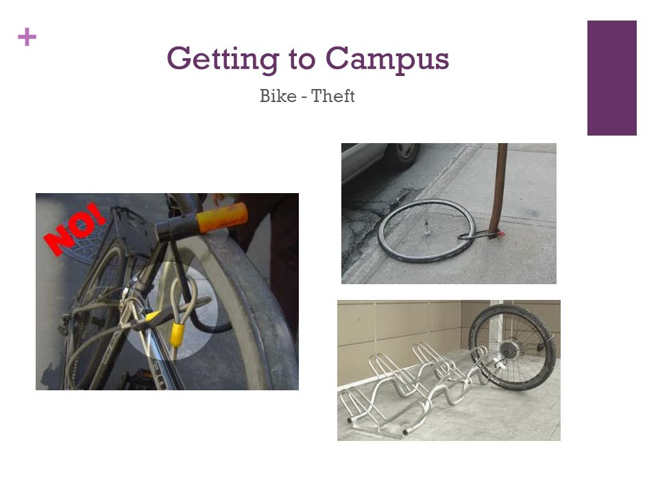 + Getting to Campus Bike - Theft