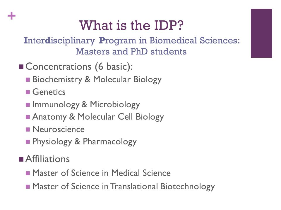 + What is the IDP.
