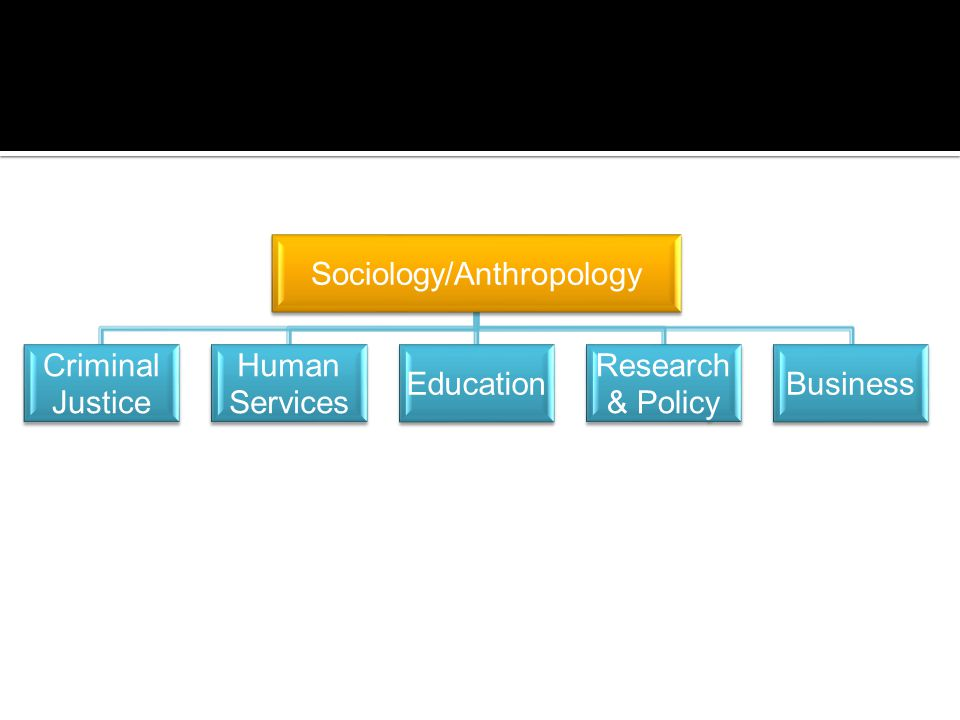 Sociology/Anthropology Criminal Justice Human Services Education Research & Policy Business
