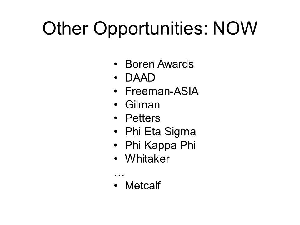 Other Opportunities: NOW Boren Awards DAAD Freeman-ASIA Gilman Petters Phi Eta Sigma Phi Kappa Phi Whitaker … Metcalf