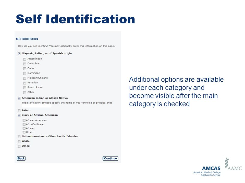 Self Identification Additional options are available under each category and become visible after the main category is checked