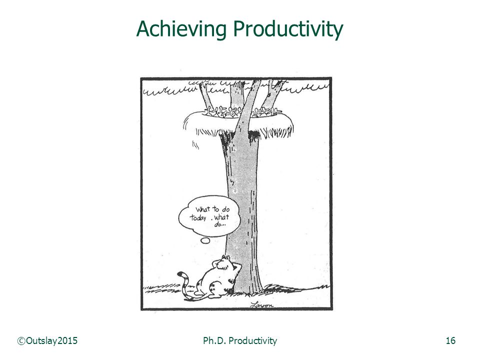 ©Outslay2015Ph.D. Productivity16 Achieving Productivity