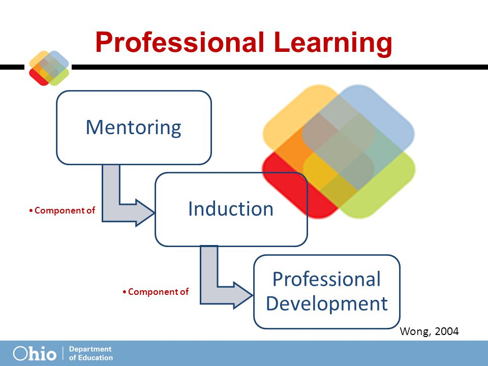 Mentoring Component of Induction Component of Professional Development Professional Learning Wong, 2004