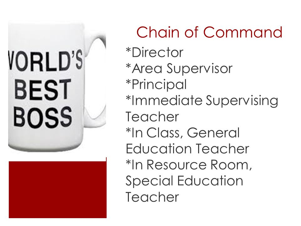 Chain of Command *Director *Area Supervisor *Principal *Immediate Supervising Teacher *In Class, General Education Teacher *In Resource Room, Special