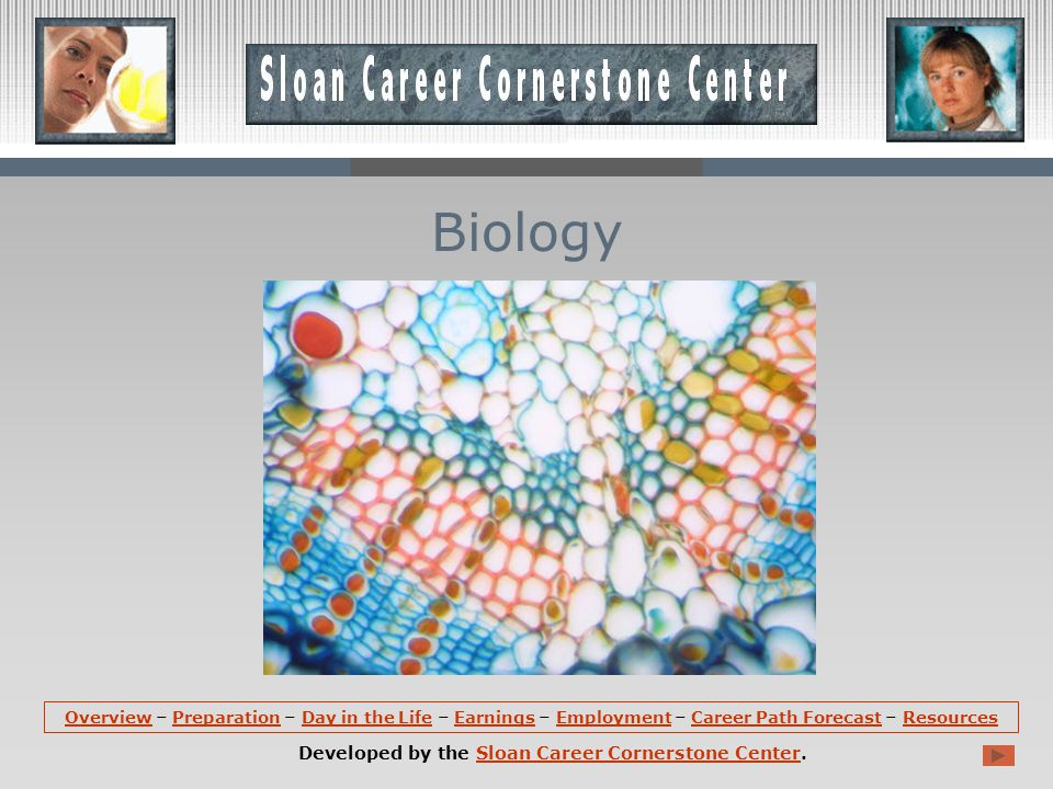 OverviewOverview – Preparation – Day in the Life – Earnings – Employment – Career Path Forecast – ResourcesPreparationDay in the LifeEarningsEmploymentCareer Path ForecastResources Developed by the Sloan Career Cornerstone Center.Sloan Career Cornerstone Center Biology
