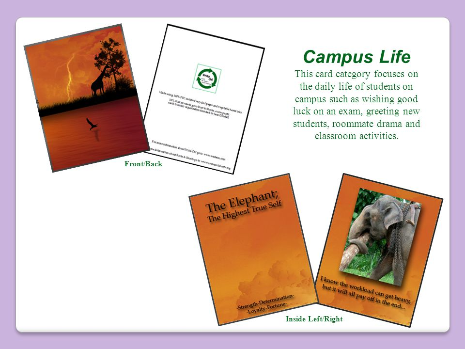 Campus Life This card category focuses on the daily life of students on campus such as wishing good luck on an exam, greeting new students, roommate drama and classroom activities.