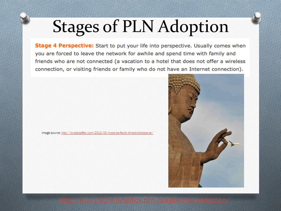 Stages of PLN Adoption http://www.thethinkingstick.com/stages-of-pln-adoption/ image source: http://twistedsifter.com/2013/03/most-perfectly-timed-pho