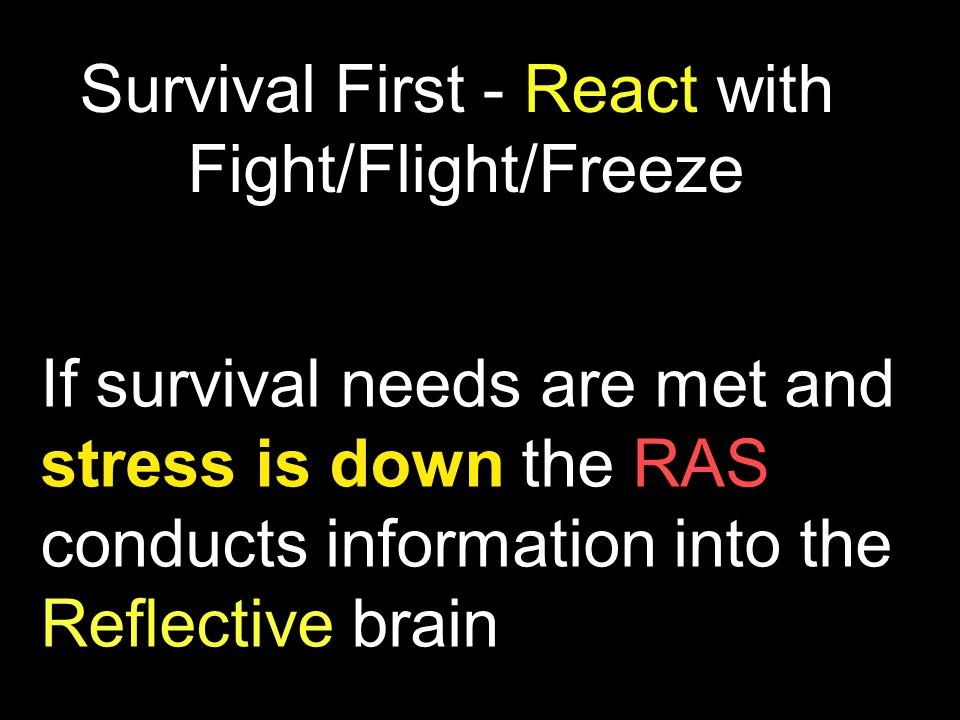 If survival needs are met and stress is down the RAS conducts information into the Reflective brain Survival First - React with Fight/Flight/Freeze