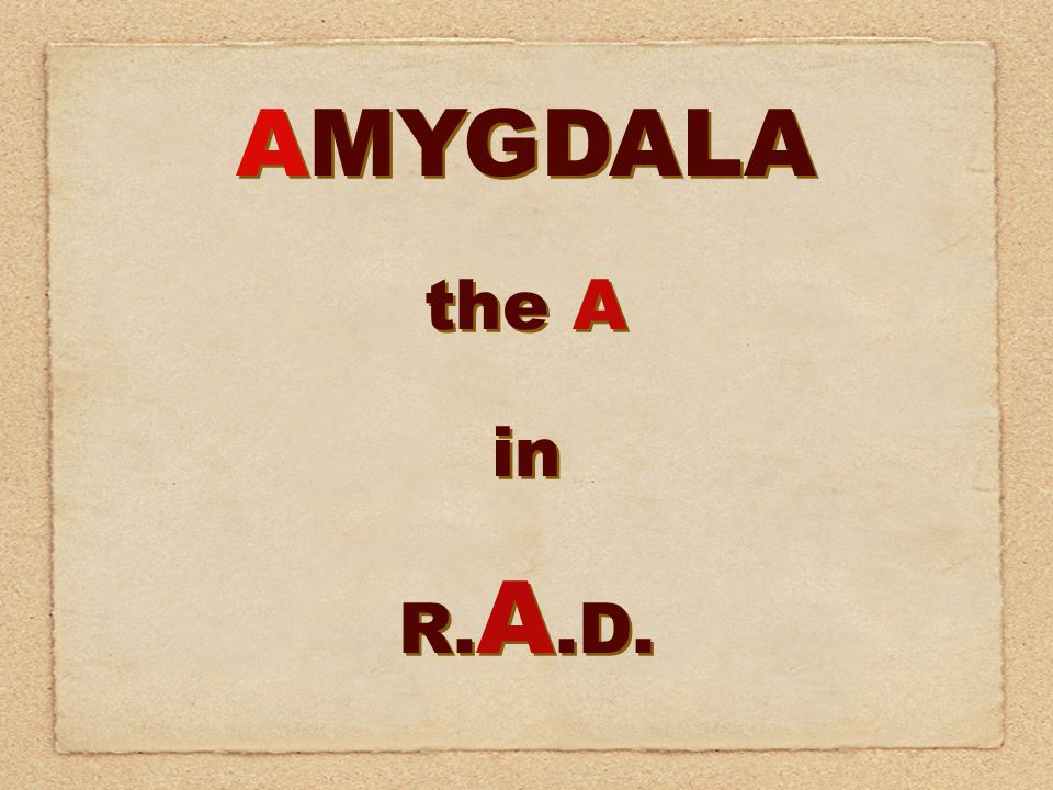 AMYGDALA the A in R. A.D. AMYGDALA the A in R. A.D.