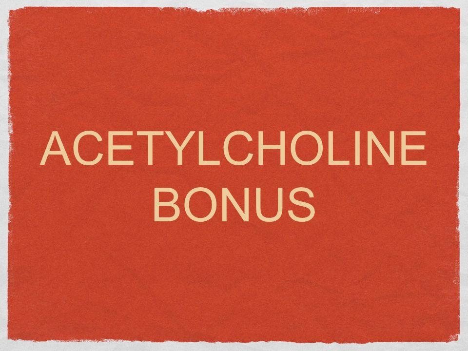 ACETYLCHOLINE BONUS