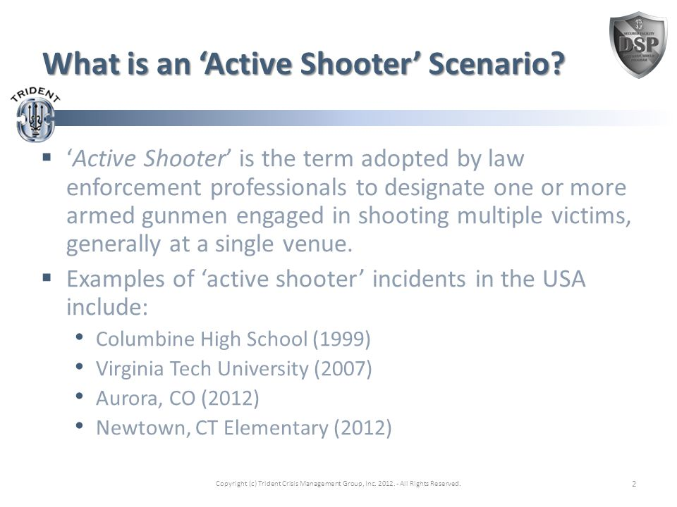 Venue Risk 'At Risk'  Shopping Malls  Movie Theaters  Restaurants  Schools  Office Buildings  Hospitals  Nursing Homes  Playgrounds Not 'At Risk'  Police Stations  Prisons  Gun Shows  Gun Shops Copyright (c) Trident Crisis Management Group, Inc.