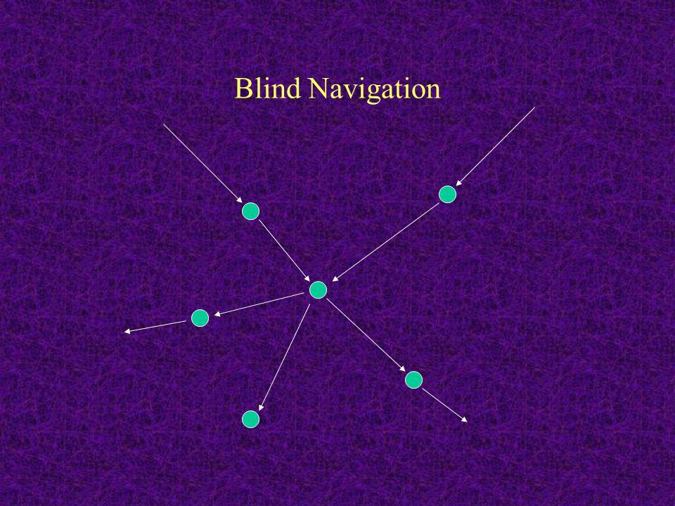 Blind Navigation