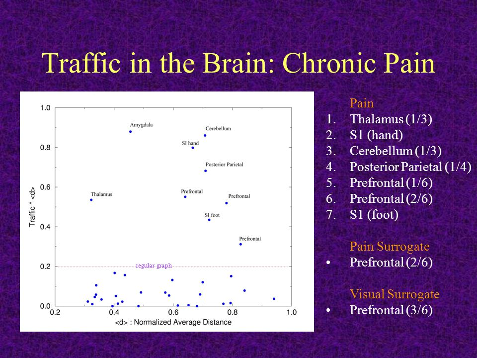 Traffic in the Brain: Chronic Pain regular graph Pain 1.Thalamus (1/3) 2.S1 (hand) 3.Cerebellum (1/3) 4.Posterior Parietal (1/4) 5.Prefrontal (1/6) 6.Prefrontal (2/6) 7.S1 (foot) Pain Surrogate Prefrontal (2/6) Visual Surrogate Prefrontal (3/6)