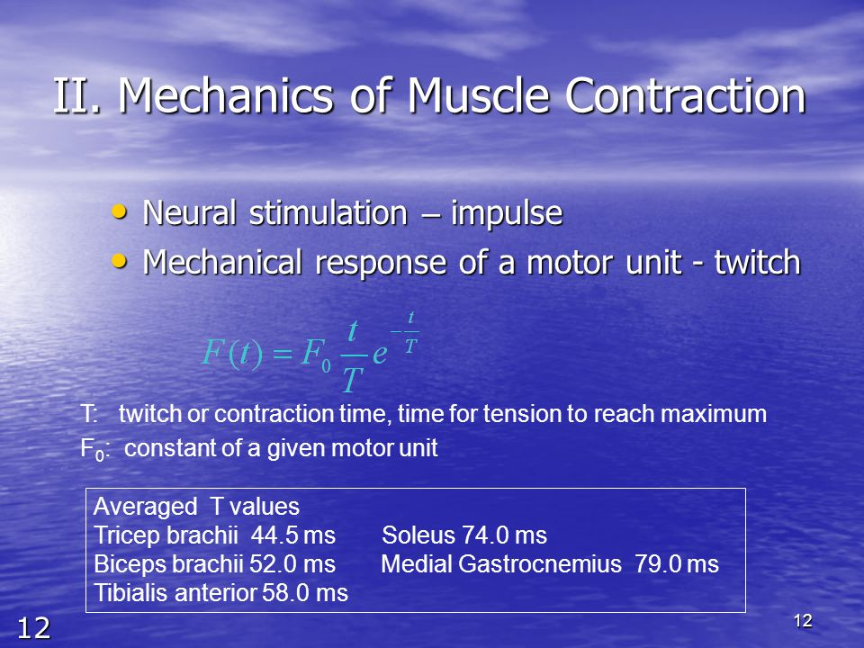 12 12 II. Mechanics of Muscle Contraction Neural stimulation – impulse Neural stimulation – impulse Mechanical response of a motor unit - twitch Mecha