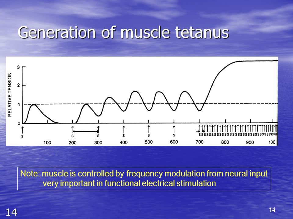 14 14 Generation of muscle tetanus 10 Hz 100Hz Note: muscle is controlled by frequency modulation from neural input very important in functional elect