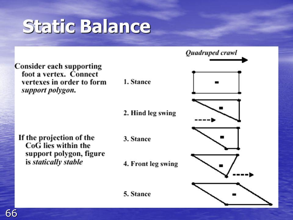 66 Static Balance