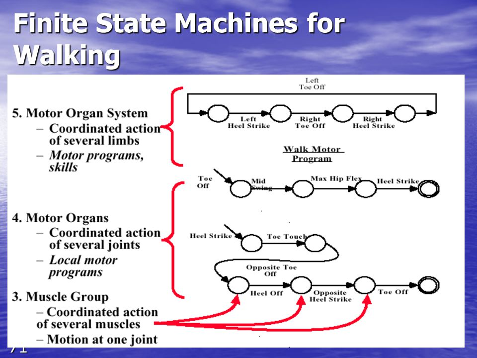 71 Finite State Machines for Walking