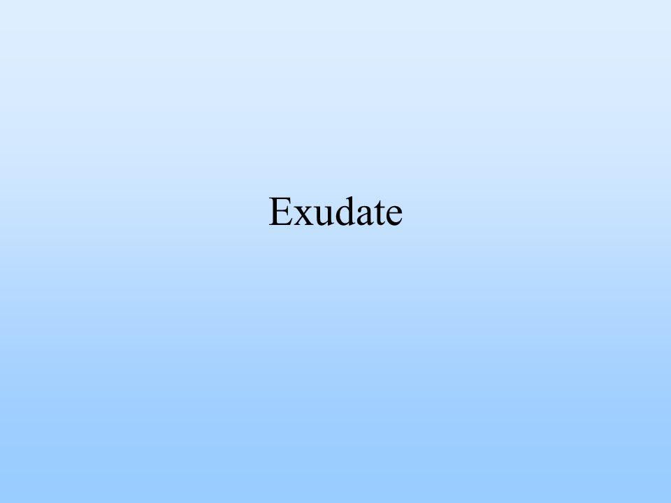 Exudate