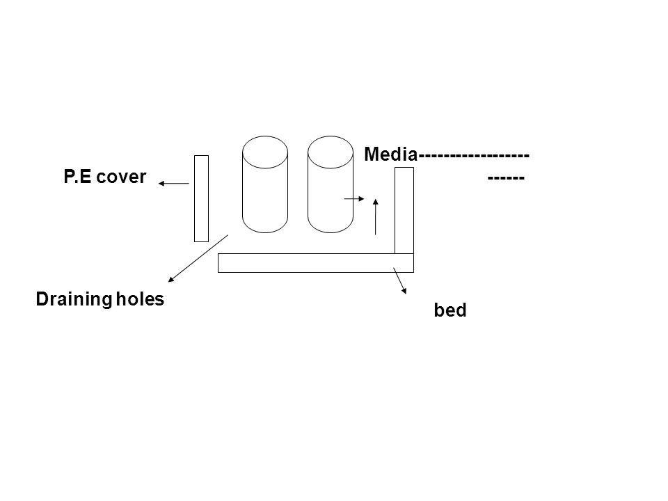 P.E cover Draining holes Media------------------ ------ bed