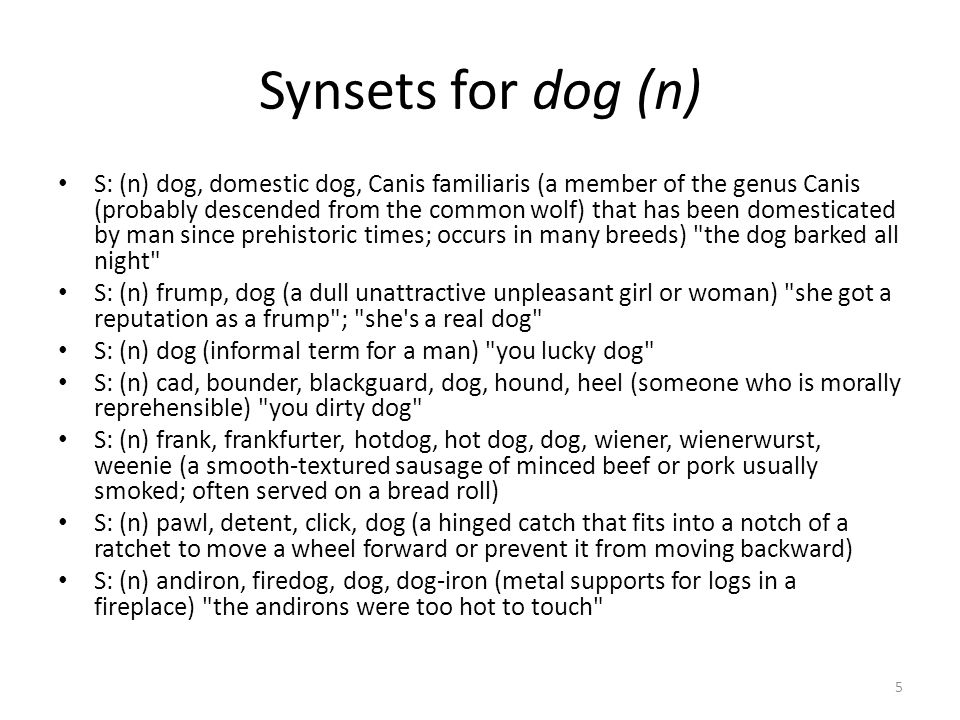Synsets for dog (n) S: (n) dog, domestic dog, Canis familiaris (a member of the genus Canis (probably descended from the common wolf) that has been domesticated by man since prehistoric times; occurs in many breeds) the dog barked all night S: (n) frump, dog (a dull unattractive unpleasant girl or woman) she got a reputation as a frump ; she s a real dog S: (n) dog (informal term for a man) you lucky dog S: (n) cad, bounder, blackguard, dog, hound, heel (someone who is morally reprehensible) you dirty dog S: (n) frank, frankfurter, hotdog, hot dog, dog, wiener, wienerwurst, weenie (a smooth-textured sausage of minced beef or pork usually smoked; often served on a bread roll) S: (n) pawl, detent, click, dog (a hinged catch that fits into a notch of a ratchet to move a wheel forward or prevent it from moving backward) S: (n) andiron, firedog, dog, dog-iron (metal supports for logs in a fireplace) the andirons were too hot to touch 5