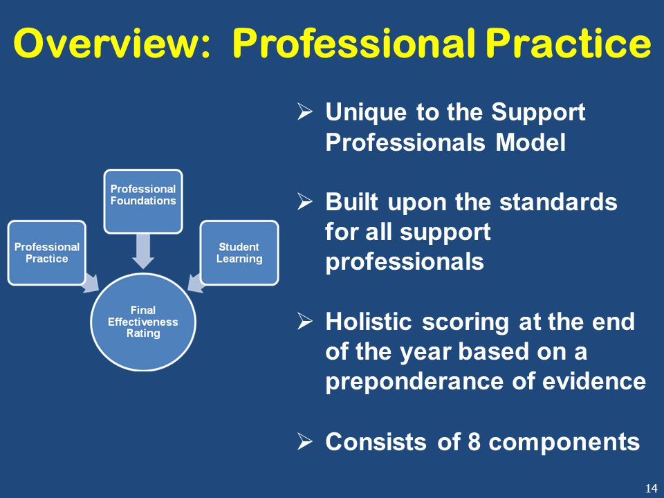 14 Overview: Professional Practice  Unique to the Support Professionals Model  Built upon the standards for all support professionals  Holistic scoring at the end of the year based on a preponderance of evidence  Consists of 8 com ponents
