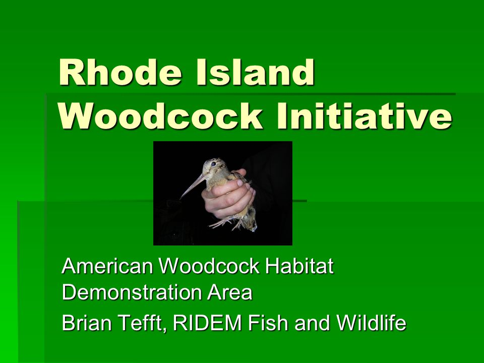 Objectives  Create Habitat Demonstration Area for American Woodcock  Manage Early Successional Habitats for Woodcock and other wildlife using BMP's  Monitor woodcock response to management  Measure key habitat features  Measure use of habitats by avian species  Create educational materials for private landowners